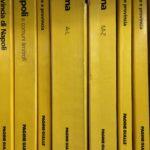 Installation comportant environ 2500 annuaires venant du monde entier disposés sur des étagères de l'année 1993