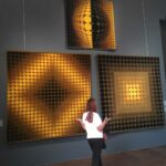 The Optical Art by Victor Vasarely